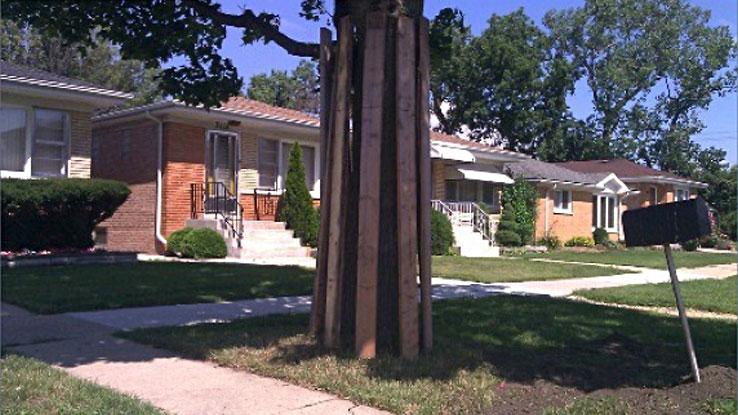 Elm Street Reconstruction